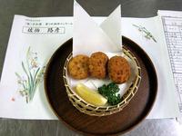 豆腐の揚げギョウザ