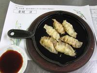 豆腐のヘルシー餃子