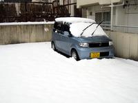愛車雪まみれ