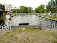 時間釣り池